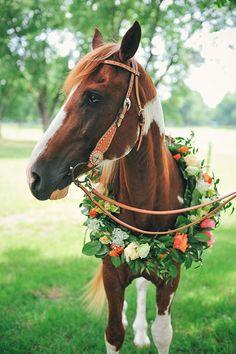 Western Wedding Ideas - Horse Farm Wedding by Ashlee Culverhouse | Southern…