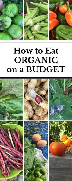 Want to eat organic without breaking the bank? Here are ten tips for eating organic and SAVING money! :)