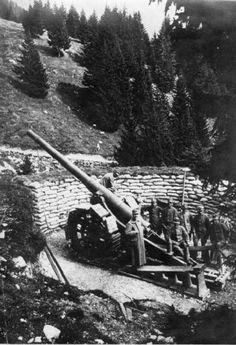 Italian Artillery in Valle Raccolana.WW1