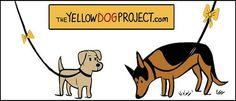 Un lazo amarillo en la correa del perro
