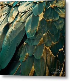 Feather Glitter Teal And Gold Canvas Print / Canvas Art by Mindy Sommers - Feather Glitter Teal And Gold Canvas Print by Mindy Sommers. All canvas prints are professionally p - Gold Rooms, Gold Bedroom, Gold Walls, Bedroom Vintage, Glitter Bedroom, Gold Painted Walls, Gold Color Palettes, Gold Palette, Green Palette