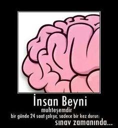 Her beyin böyle işlemiyor. Sadece buna inananlar.