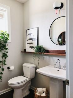 Introducing Gorgeous Small Bathroom Decor Ideas cool From time to time, all you have to make them feel welcome is some little suggestions for your guest bathroom. It is possible to also test out your dec. Small Bathroom Sinks, Downstairs Bathroom, Bathroom Renos, Pedastal Sink Bathroom, Bathroom Mirror With Shelf, Pedestal Sink Storage, Small Sink, Bathroom Plants, Master Bathroom