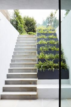 Stairs Outdoor Steps Plants 56 Ideas For 2019 Design Patio, Exterior Design, Garden Design, House Design, Villa Design, Stairs Architecture, Garden Architecture, Interior Architecture, Outdoor Steps
