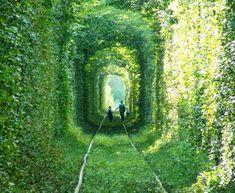 """El túnel modelado por el paso del tren (Ucrania)    Ésta vez, la naturaleza se ha adaptado al paso del hombre en forma de tren. Un denso bosque acompañando una vía ha formado un túnel a la medida del tren, una galería frondosa conocida (sin mucha originalidad, hay que decirlo) como el """"Túnel del amor"""":"""