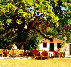 Summer in the quadrado. Trancoso, Bahia