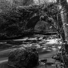 river Blackwater, Virginia co Cavan. long exposure by Guntars Display Advertising, Print Advertising, Long Exposure Photos, Photo Dimensions, Forest Park, Us Images, Wall Art Prints, Virginia, Landscapes