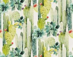 View CUILKO by Pierre Frey at Ethnic Chic. Worldwide Shipping Wallpapers Floral Pierre Frey By The Meter / Yard Large Pattern Paper Flame retardant Cactus Pierre, Custom Carpet, Desert Flowers, Rare Plants, Print Wallpaper, Bunt, Printing On Fabric, Illustration, Painting