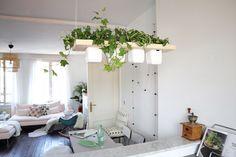 Diy Trend Kruidentuin : Best diy ideen mit pflanzen images garden