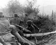 101st airborne division | File:101st Airborne Division - Vietnam 01.jpg - Wikipedia
