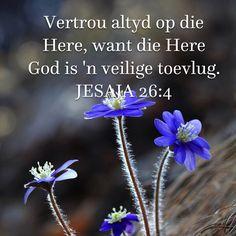 JESAJA Vertrou altyd op die Here, want die Here God is 'n veilige toevlug. Faith Quotes, Bible Quotes, Lekker Dag, Afrikaanse Quotes, Goeie Nag, Goeie More, Encouraging Bible Verses, Special Words, Faith Prayer