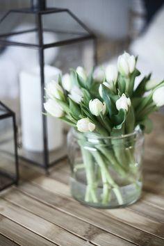 white tulips in a vase Tulips In Vase, White Tulips, Tulips Flowers, Silk Flowers, Spring Flowers, Planting Flowers, Beautiful Flowers, Flowers Garden, Flower Power