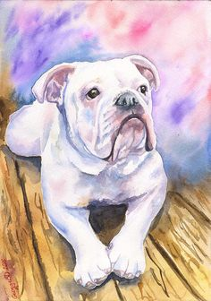 English Bulldog watercolor Print of the by GeorgeWatercolorArt-- George Dyachenko