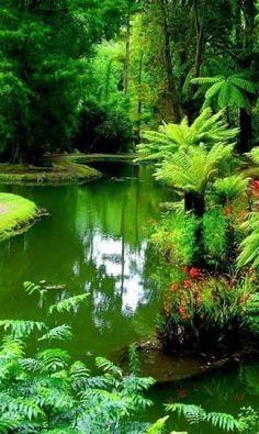 Beautiful Places To Visit, Beautiful World, Beautiful Gardens, Beautiful Nature Wallpaper, Beautiful Landscapes, Landscape Photography, Nature Photography, Nature Pictures, Amazing Nature