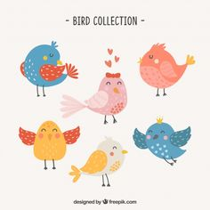 Cute hand drawn bird collection Free Vector Cute Animal Drawings Kawaii, Cute Drawings, Flying Bird Drawing, Feather Art, Sewing Art, Bird Illustration, Cute Birds, Kids Prints, Pottery Painting