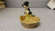 Boston Terrier dog ready for bath trinket dish. Old. For Rikki's Refuge, charity