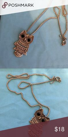 Owl necklace It is great condition Premier Designs Jewelry Necklaces