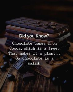 We bring you the best Chocolate Day Status, that you love to share with your partner. These are the adorable quotes on Chocolate day, can't control to share Happy Chocolate Day, Chocolate Humor, Chocolate Quotes, Chocolate Lovers, Chocolate Deserts, Cocoa Chocolate, Food Quotes, New Quotes, Happy Quotes