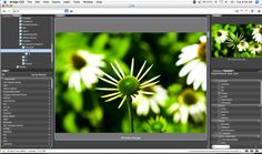 Choose Your Own Photo Editing Software - http://newsrule.com/choose-your-own-photo-editing-software/