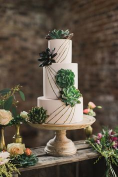 succulent cake with lines, photo by Paula O'Hara, styling by Alise Taggart http://ruffledblog.com/irish-destination-wedding-inspiration #weddingcake #cakes