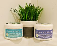 Add our organic hair mask to you haircare routine. Hair Conditioning Treatment, Hair Masque, Hair Care Routine, Tahiti, Lush, Conditioner, Organic, Flowers, Florals