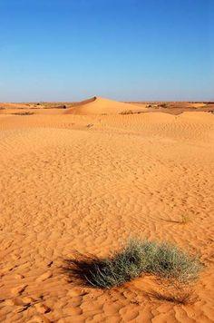 Désert dans la région de Tozeur. Tunisie.   - Explore the World with Travel Nerd Nici, one Country at a Time. http://TravelNerdNici.com