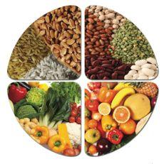 prehrana na biljnoj osnovi pdf