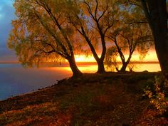 The beauty of Nature. Dawn And Dusk, Sunset Photos, Natural Beauty, Sunrise, Country Roads, Colours, World, Nature, Outdoor