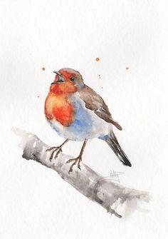 Original Aquarell Bild Rotkehlchen  Robin  17 x 24 cm Watercolor Painting