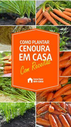 Como plantar cenoura em casa: dicas e receitas | Como fazer em casa Carrots, Vegetables, Flowers, Plants, Food, Carrot Greens, Raised Flower Beds, Rosemary Tea, Small Vegetable Gardens