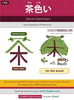 n5-vocabulary-chairoi-light-brown