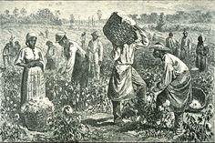 À partir de 1640, les constitutions du Maryland et de la Caroline attestent l'esclavage. Dorénavant, les noirs n'ont plus aucun droit et ils peuvent être vendus comme de la simple marchandise.
