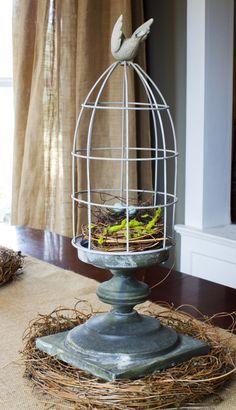 Wire cloche with bird's nest