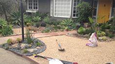 Landscaping in Santa Barbara, CA. Landscaping Company, Front Yard Landscaping, Landscape Maintenance, Santa Barbara, Patio, Outdoor Decor, Plants, Plant, Planets