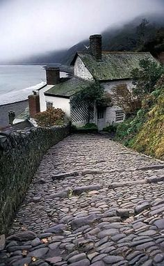 Cobbled steps.. Clovelly, Devon, England