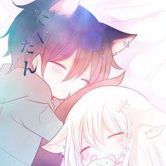 Nii-tan y Shiro Anime Neko, Lolis Neko, Gato Anime, Cute Anime Chibi, Anime Love, Manga Anime, Kawaii Neko Girl, Cute Neko Girl, Kawaii Chibi