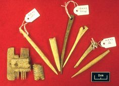Oxford Archaeology: Early Medieval Specialist Skills - Hinxton