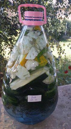 Zseniális újítás, erre biztosan nem gondoltál eddig! Elő a palackkal és a zöldségekkel! Készüljön a legfinomabb téli savanyúság!