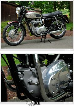 Triumph Bonneville. These engines are just perfect!