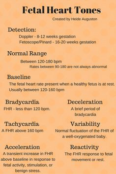 Fetal Heart Tones - ranges and definitions. Nursing Board, Ob Nursing, Maternity Nursing, Midwife Assistant, Physician Assistant School, Midwife Training, Doula Business, Labor Nurse, Passion Work