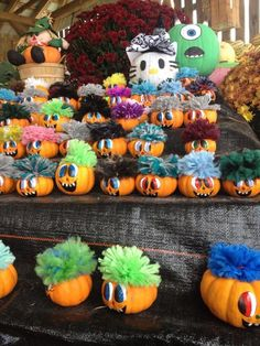 Pumpkins with hair