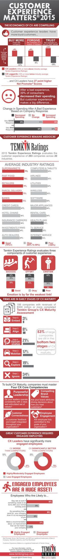 The Ultimate Customer Experience Infographic, 2015 | Customer Experience Matters