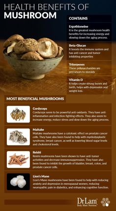 Mushroom Health Benefits for Immunity and the NeuroEndoMetabolic Stress Response Health Benefits Of Mushrooms, Mushroom Benefits, Coconut Health Benefits, Nutrition Guide, Health And Nutrition, Health Tips, Smart Nutrition, Health Articles, Tomato Nutrition