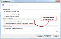 Database replacement - Replace mounted or physical databases without errors