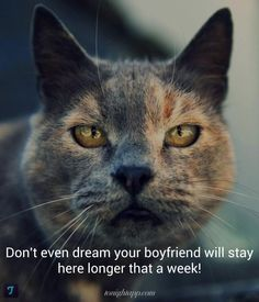 Don't even dram your boyfriend will stay here longer that a week!