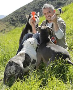 Engage in Thoughtful Playtime With Your Dog | Cesar Millan