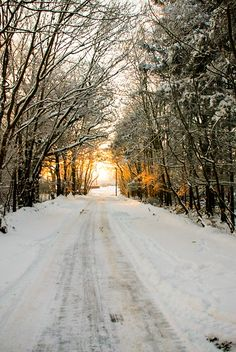 Country road in winter (Northern Ireland) by Andi Hamilton cr.