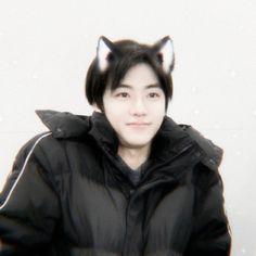 Cat People, Na Jaemin, Nct Dream, My Boys, Beautiful People, Kitty, Cute, Friends, Cat Ears