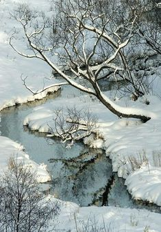 Another beautiful winter reflection...