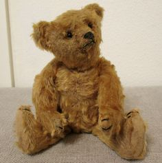 1905 Steiff teddy bear $90 etsy find